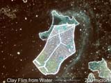 Clay Film from Water Under the Microscope
