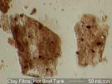 Clay Film from Hot Seal Tank Under the Microscope