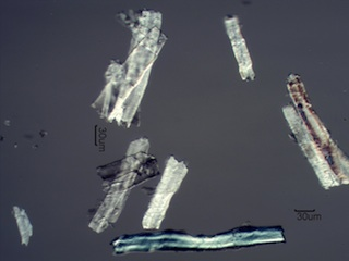 Paper Fibers with a DP of 160