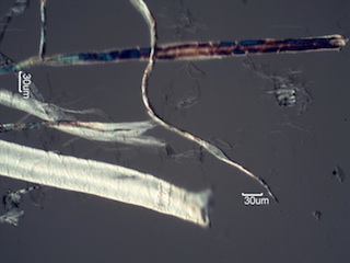 Paper Fibers with a DP of 300
