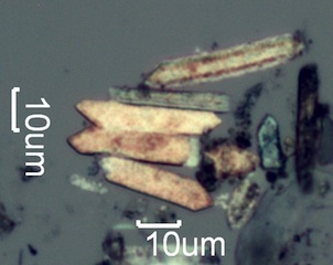 Pyrolized Phytoliths