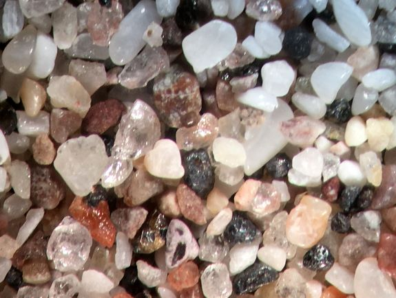 Beach Sand From San Carlos, Mexico, Sea of Cortez